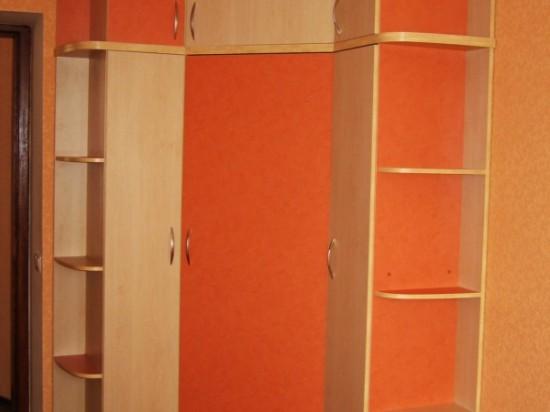 Распашной шкаф 5