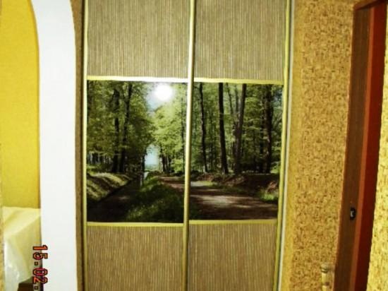 Встроенный шкаф 11
